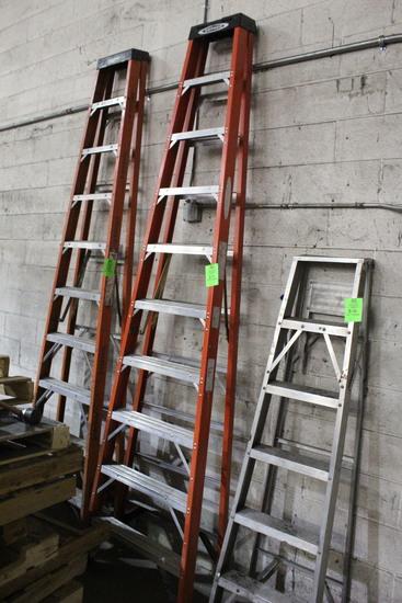 Werner 9' A-Frame Ladder