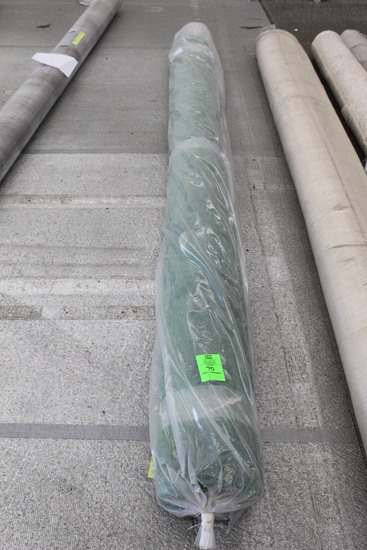 12' x 12' Green Carpet Roll