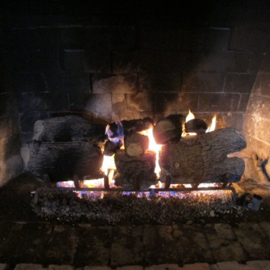 gas fireplace logs with grate