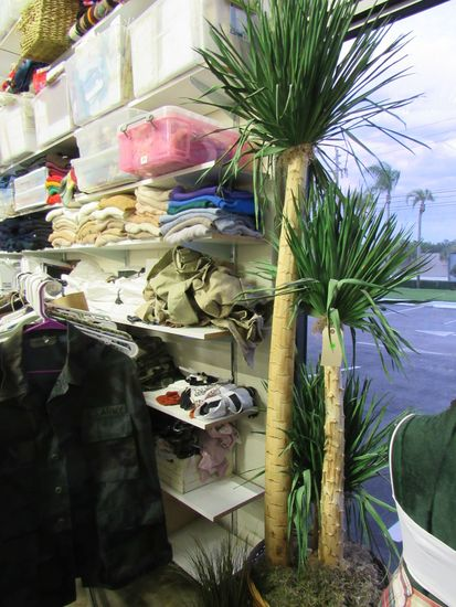 artificial palm tree in basket