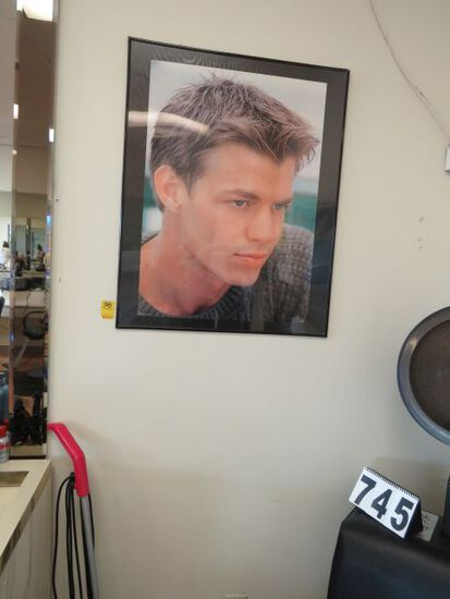 """group of 5 hair style models posters 24"""" w x 36"""" high"""