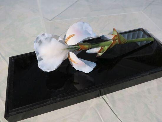 ceramic bisque orchids in Plexiglas display case
