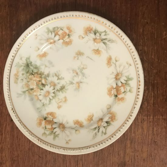 "Carl Schlegelmilch 6 1/8""  porcelain dinner plate"