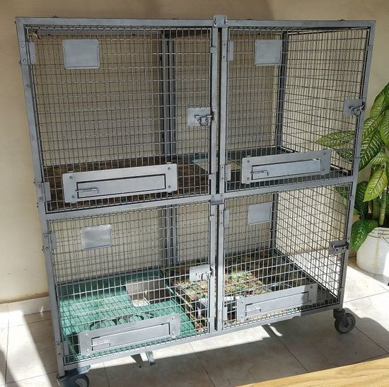 Large Pet Shop Breeder Animal Cat Dogs Cages on Wheels