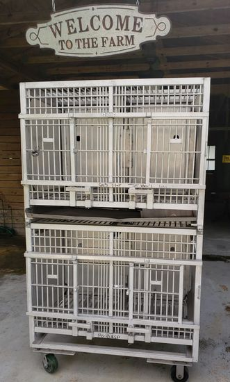 Large Zoo Animal Dog Cat Monkey Aluminum Cages on Wheels