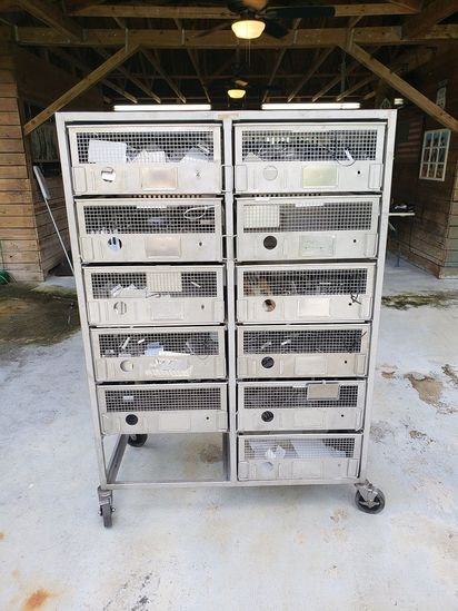 Animal Stainless Steel Cages Breeding Farming