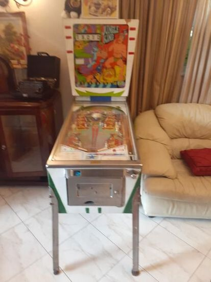 Jungle King Pinball Machine by D. Gottlieb - working