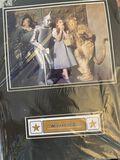 Wizard of Oz Frame