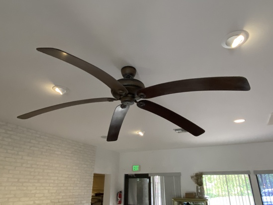 Ceiling Fan with (5) Extra Long Curved Blades (VERY COOL)