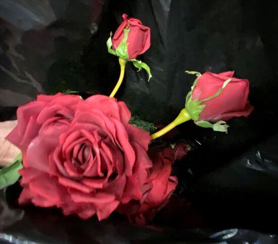 Bag full of Artificial Red Rose Flowers