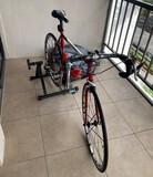 Jamis Eclipse Racing Bicycle with Indoor Riding Stand (low miles)