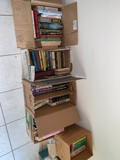 (6) Boxes of Books