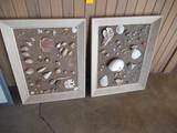 (2) FRAMED SEA SHELL ARTWORK