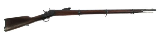 Remington Modelo Argentino 1879 11mm