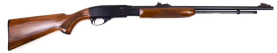 Remington Model 572 Deluxe Field Master .22 sl lr