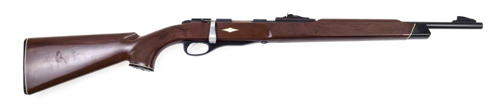 Remington Nylon 10 .22 sl lr