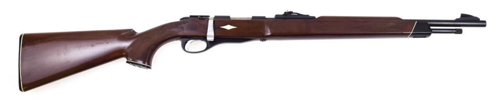 Remington Nylon 12 .22 sl lr