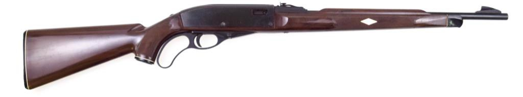 Remington Nylon 76 .22 lr