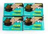 Brown Bear .223 ammo