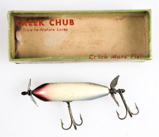 Creek Chub - Baby Injured Minnow - 1603