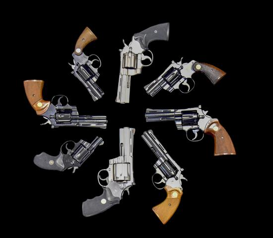 Election Day Gun Auction