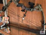 Compound bow arrows and tips