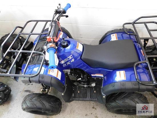 Apollo Rider7 (4 wheeler) VIN-A7RAGB1AJ0000980