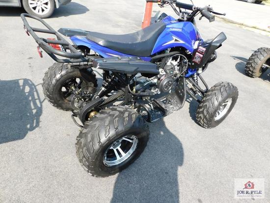 YL200ATV-6 (4 wheeler) VIN-LK85CLLF0YOY100023