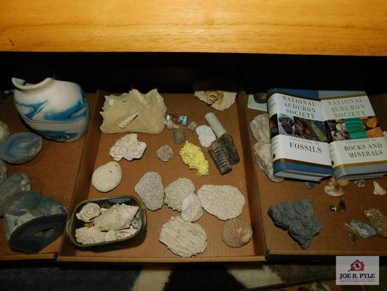 Collection of rocks, geodes, crystals with National Audubon Society books