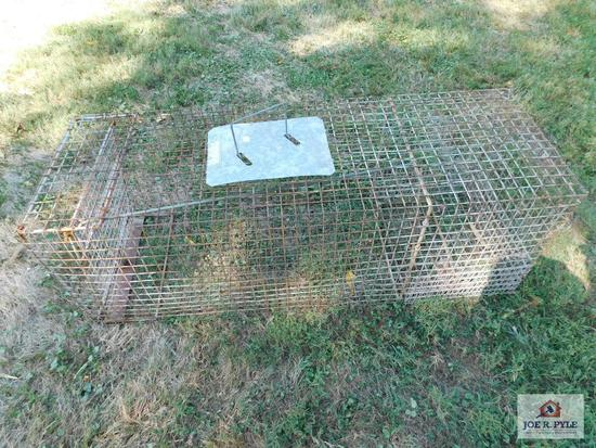 Large humane animal trap