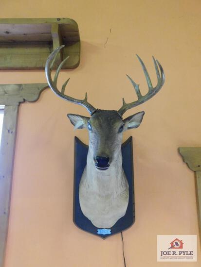 Talking buck with micro phone wall mounted deer