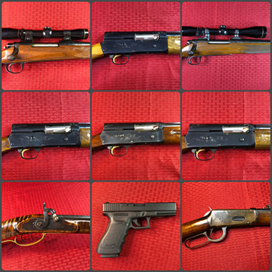 Evening Gun & Sporting Goods Auction