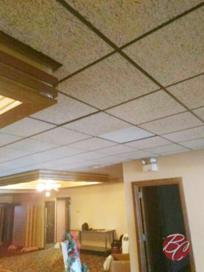 Ceiling tiles for whole building