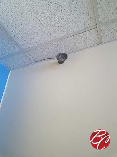 Security Cameras W/ Swann Dvr