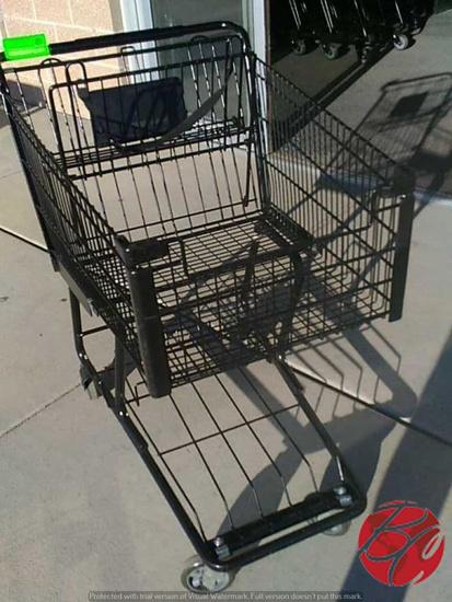 2015 Technibilt F2372 Shopping Carts