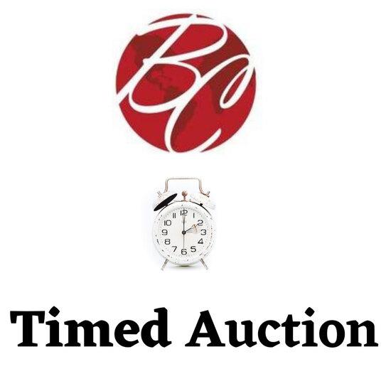 Amazon Surplus & Returns Timed Auction A1064