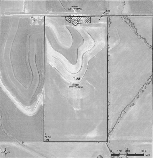 Farm 3 - 80 acres m/l