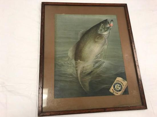 Bass Fish Picture with Arm & Hammer, Church & Co's Soda Box