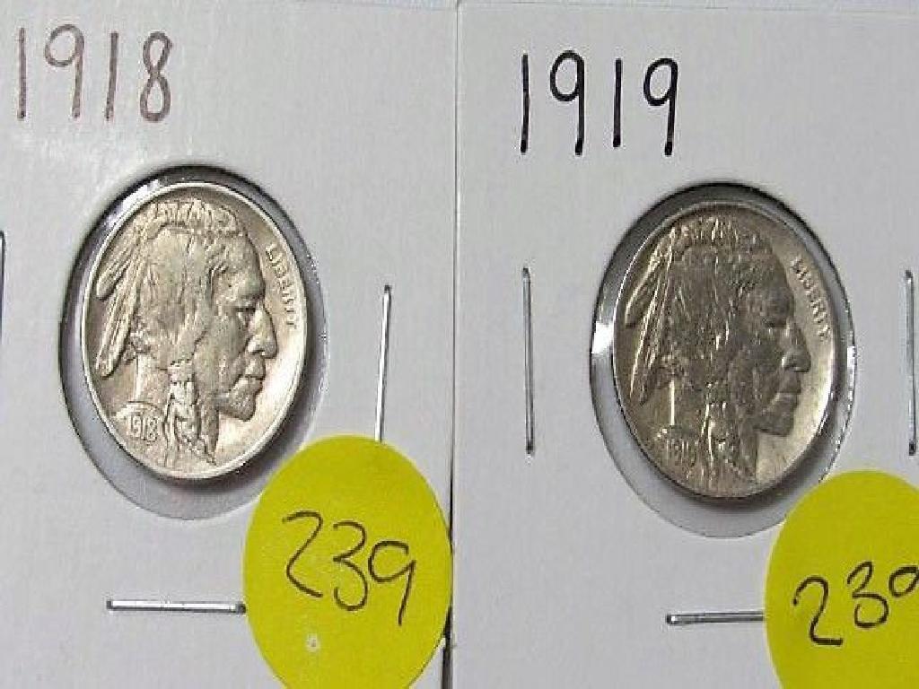 1918, 1919 Buffalo Nickel