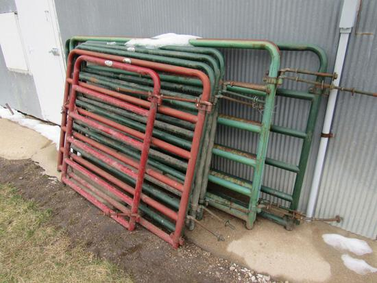 8 various lengthed Cattle Panels