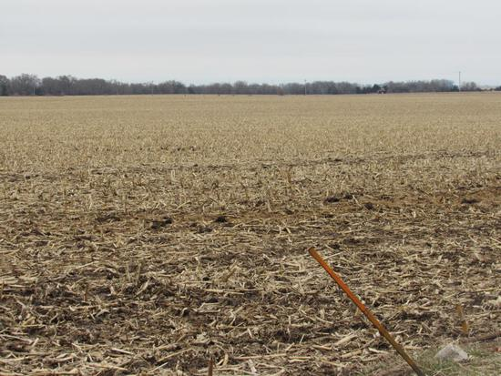 Parcel 1- 234 Acres of Butler County Pivot Irrigated Farm Ground