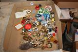 Large lot of Pins