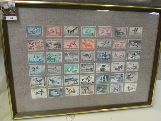 "Framed Print Of A Collection Of Federal Migratory Bird Hunting Stamps. 14"" X 20"" Frame."
