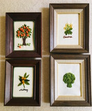 4 Framed Embroidery
