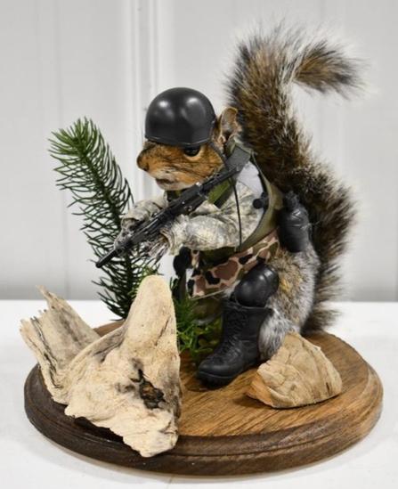 Full Body Grey Squirrel In Swat Military Uniform