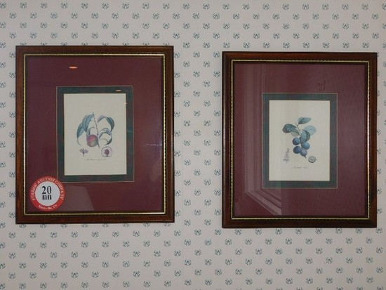"(4) Framed Prints, 16"" x 18"""