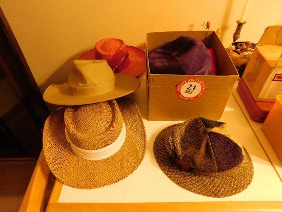 (6) Hats