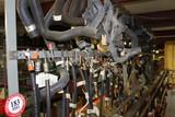 Motor Craft & Ford Hoses, Fuel Lines, Transmission Lines, Cooling Hoses, Et