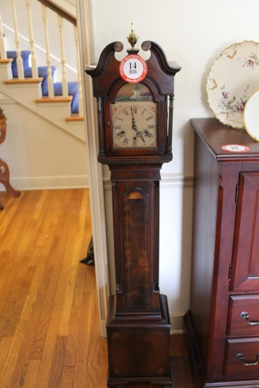 Grandmother Clock, Walnut