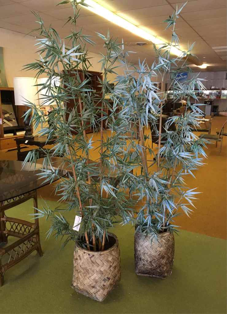 Two Artificial Bamboo Trees